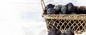 truffes noirs direct du producteur